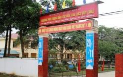 Thêm 37 học sinh ở Nghệ An ngộ độc sau khi ăn hạt quả ngô đồng