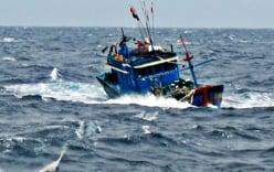 Nghệ An: Ngư dân bị lưới cuốn xuốn biển mất tích
