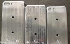 Xuất hiện khuôn đúc 3 chiếc iPhone thế hệ kế tiếp