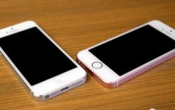 iPhone SE lock vẫn chưa hạ nhiệt dù có thể bị Apple khóa