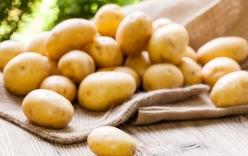 Khoai tây rất tốt, nhưng nếu ăn khoai tây kiểu này lại có hại