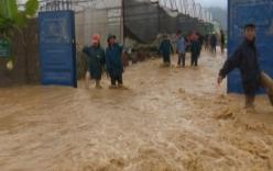 Miền Bắc mưa lớn kéo dài 4-5 ngày tới, đề phòng sạt lở diện rộng