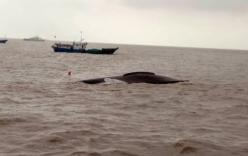 Tàu cá Trung Quốc đâm nhau, 9 người thiệt mạng