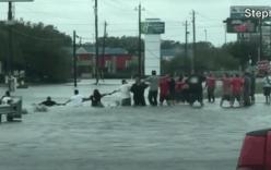 Video: Dân Mỹ nắm tay nhau cứu cụ ông mắc kẹt trong nước lũ