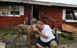Những khoảnh khắc rơi nước mắt trong bão Harvey