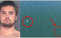 Tưởng nhảy xuống biển trốn thoát cảnh sát, tên tội phạm đụng ngay cá mập