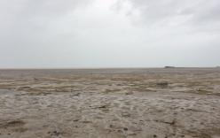 Hy hữu: Siêu bão Irma hút sạch nước khỏi vịnh và nhiều bờ biển