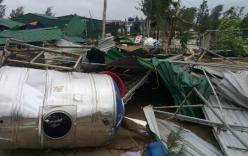 Bão số 10 khiến 13 người thương vong, thiệt hại gần 3.500 tỷ đồng