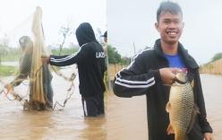 Sau bão số 10, người dân Quảng Bình quăng chài bắt cá trên đường