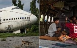 Cuộc sống kỳ lạ trong chiếc máy bay bỏ hoang ở Thái Lan