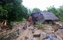 Chính phủ Nhật Bản hỗ trợ các địa phương bị lũ lụt tại Việt Nam