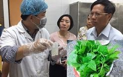 Phát hiện rau mồng tơi tồn dư thuốc trừ sâu trong bếp ăn của trẻ mầm non