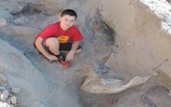 Cậu bé 9 tuổi tưởng mình vấp phải đá nhưng không ngờ lại là báu vật cực hiếm