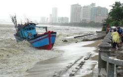 Thiệt hại do bão, cứ đổ tại người dân chủ quan là xong?