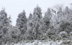 Chuyên gia khí tượng thủy văn: Chưa xuất hiện hiện tượng tuyết rơi ở Miền Bắc do mưa rét