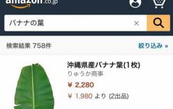 Lá chuối Việt Nam bán tại Nhật giá 500.000 đồng/chiếc
