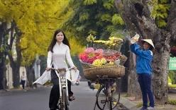 Tin thời tiết 19/1: Hà Nội ấm dần, Sài Gòn tăng mưa
