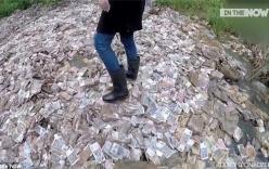 Sung sướng phát hiện núi tiền hơn 400 tỷ đồng nhưng không ngờ sự thật cay đắng