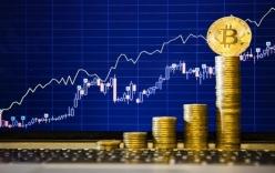 Giá bitcoin hôm nay 27/2: Bất ngờ hồi sinh mạnh mẽ sau khi giảm sâu