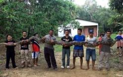 Trăn khổng lồ dài 6m, cần tới 7 người khiêng ở Malaysia gây xôn xao
