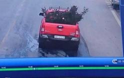 Vụ cây hoa hồng gần 20 năm tuổi ở Sơn La bị ăn trộm: Thông tin bất ngờ từ chiếc xe bán tải màu đỏ