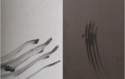 Clip: Ám ảnh những vết bàn tay quẹt trên tường trong chung cư Carina sau vụ cháy chung cư cao cấp