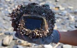 Hy hữu: Máy ảnh mất tích dưới đáy biển 2 năm và bỗng quay về với chủ trong tình trạng nguyên vẹn