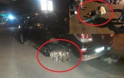 Xe bán tải đâm xe máy, tài xế kéo lê nạn nhân hàng trăm mét trên phố Hà Nội bị dân vây đánh