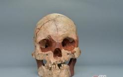 Phát hiện hộp sọ người hoàn chỉnh 16.000 năm tuổi, nhiều bí mật được tiết lộ