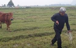 Cựu ĐBQH tỉnh Thanh Hóa: \
