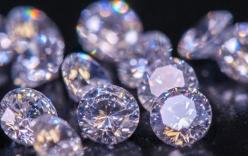Trộm trang sức kim cương hơn 14 tỷ đồng, học sinh tiểu học lĩnh trái đắng