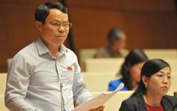Đại biểu Nguyễn Tiến Sinh: Không nên