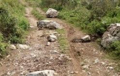 Nghệ An: 2 mẹ con cô giáo mầm non bị đá rơi trúng, tử vong khi đang đi xe máy