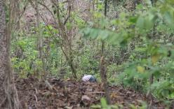 Giết người rồi mang thi thể giấu trong rừng