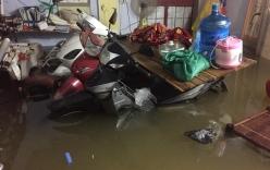 Những hình ảnh hiếm thấy trên đường phố sau trận ngập lụt kinh hoàng tại miền Bắc