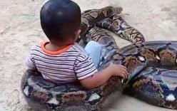 Xôn xao cảnh bố mẹ cười đùa thích thú khi con cưỡi trăn khổng lồ