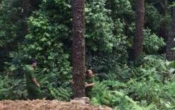 Nguyên nhân đau lòng khiến đôi nam nữ lao xe xuống vực sâu ở Tam Đảo