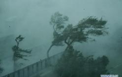 Bão Mangkhut càn quét Philippines khiến 64 người tử vong