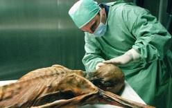 Tiết lộ khó tin về hình xăm cổ nhất thế giới trên xác ướp 5.300 tuổi