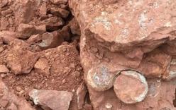 Phát hiện hàng chục quả trứng khủng long có từ 145 triệu năm trước