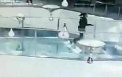 Kinh hoàng khoảnh khắc người phụ nữ rơi vào bể cá mập đúng giờ cho cá ăn