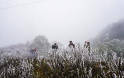 Không khí lạnh tăng cường, học sinh tiếp tục nghỉ học sau Tết Dương