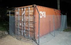 Quây rào B40, lắp camera để bảo vệ gỗ sửa trăm tỷ