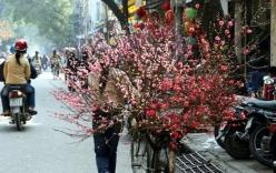 Thời tiết ngày 2/2: Hà Nội nắng ấm, Sài Gòn tạnh ráo nóng 34 độ