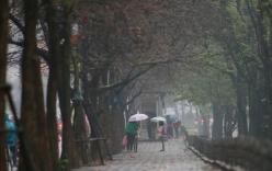 Dự báo thời tiết 13/2: Hà Nội rét và mưa phùn
