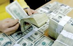 Tỷ giá ngoại tệ 20/2/2019: Giá USD tiếp tục giảm mạnh
