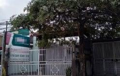 Vụ bà chủ chuỗi nhà nghỉ bị sát hại: Cảnh sát dùng chó nghiệp vụ khám nhà nghi phạm