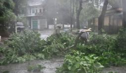 Hình ảnh mới nhất bão số 2 - bão Thần Sấm đổ bộ vào đất liền