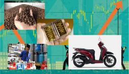 Tin tức giá cả thị trường mới nhất hôm nay 1/10: Giá vàng, giá gas bật tăng, giá xăng biến động, giá xe cực rẻ!