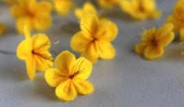 Cách làm hoa mai đón tết